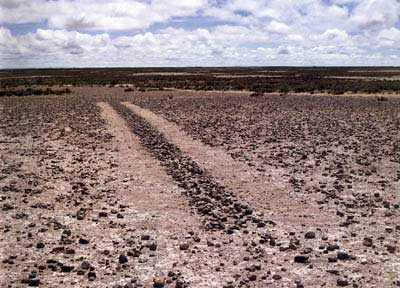 Richard Long-a Line in Bolivia 1981