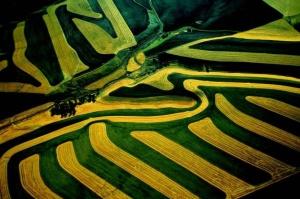 Yann Arthus Bertrand- La Terre vue du Ciel
