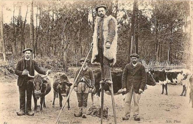 Bergers-landais-en-1915