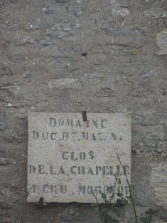 DSC02769